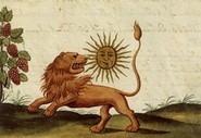 Il leone verde Edizioni