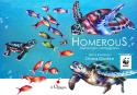 Homerous - Tartaruga coraggiosa